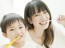 浜松の歯医者さんが解説!最適な定期健診の頻度とは?